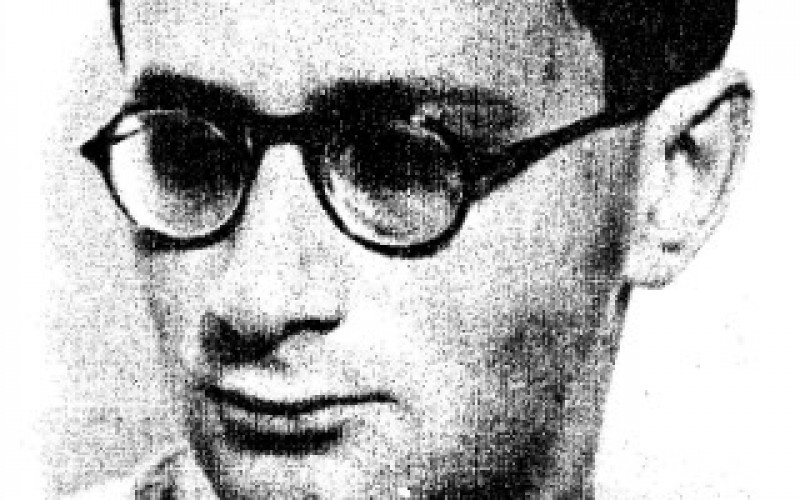 "György Bálint: ""I am scandalized, therefore I am"": A Central European publicist"