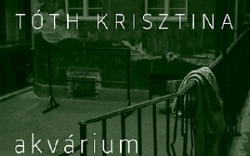 Krisztina Tóth: Aquarium